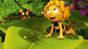 Maya l'abeille 3D (Thekla dans tous ses états) S1 (31/78)