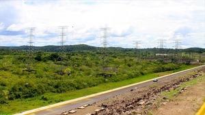 Manaus, une ville au coeur de la jungle (Loutres géantes et anacondas (7))